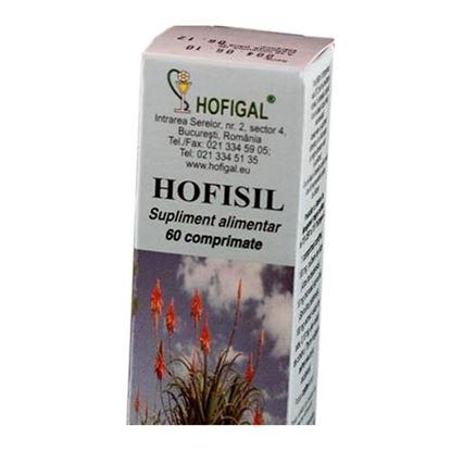 Imagine HOFIGAL HOFISIL CTX60 CPR
