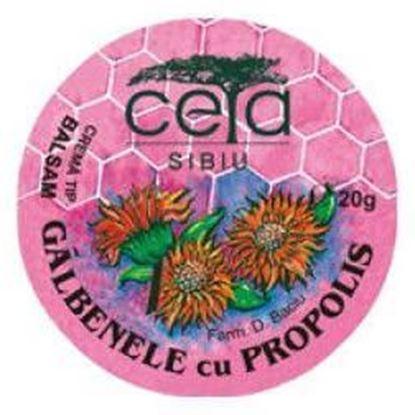 Imagine CETA UNGUENT CU GALBENELE SI PROPOLIS X 20 GRAME
